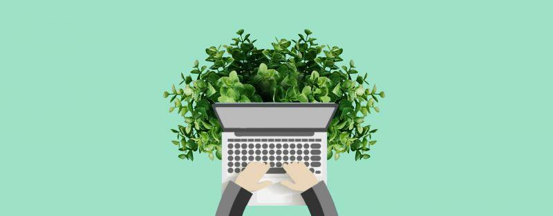 Web design sostenibile